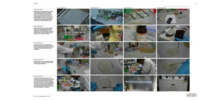 C:Documents and SettingsOwnerDesktop80607_labpages80607la